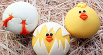 image-Easter chicks img.jpg